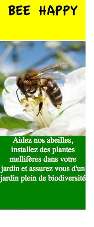 Bee_happy_biodiversité